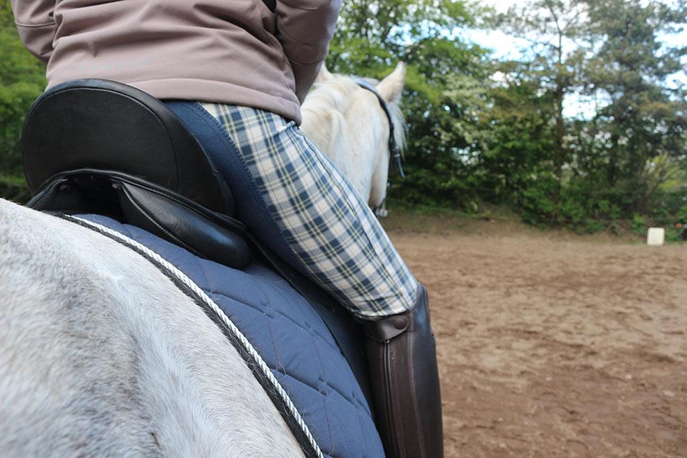 Richtiger Zeitpunkt für ein eigenes Pferd