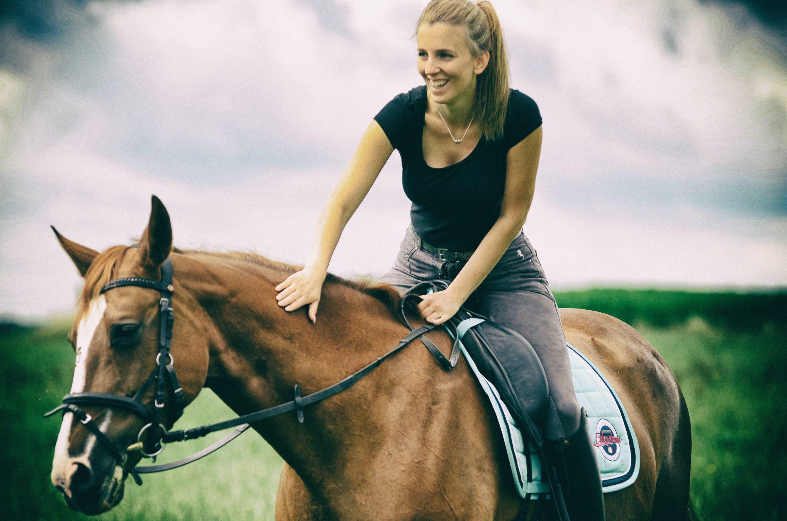 Pferd kaufen – was ist zu beachten
