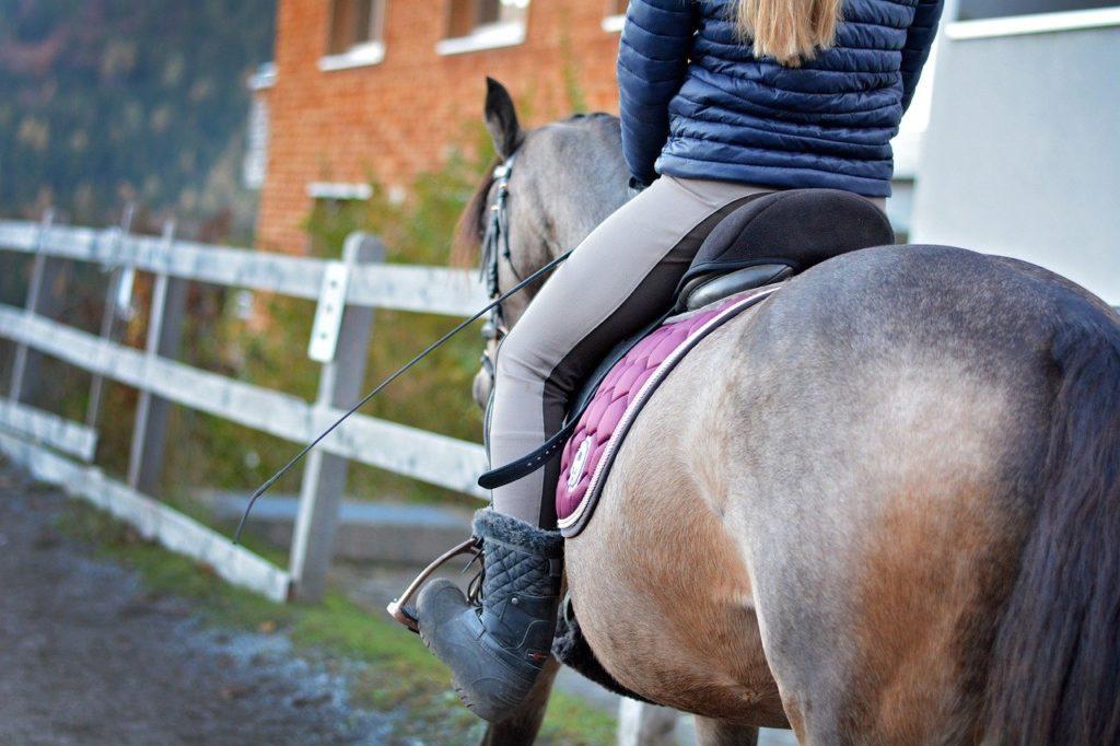 horse, pony, woman